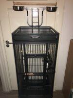 parrot bird cage set-up