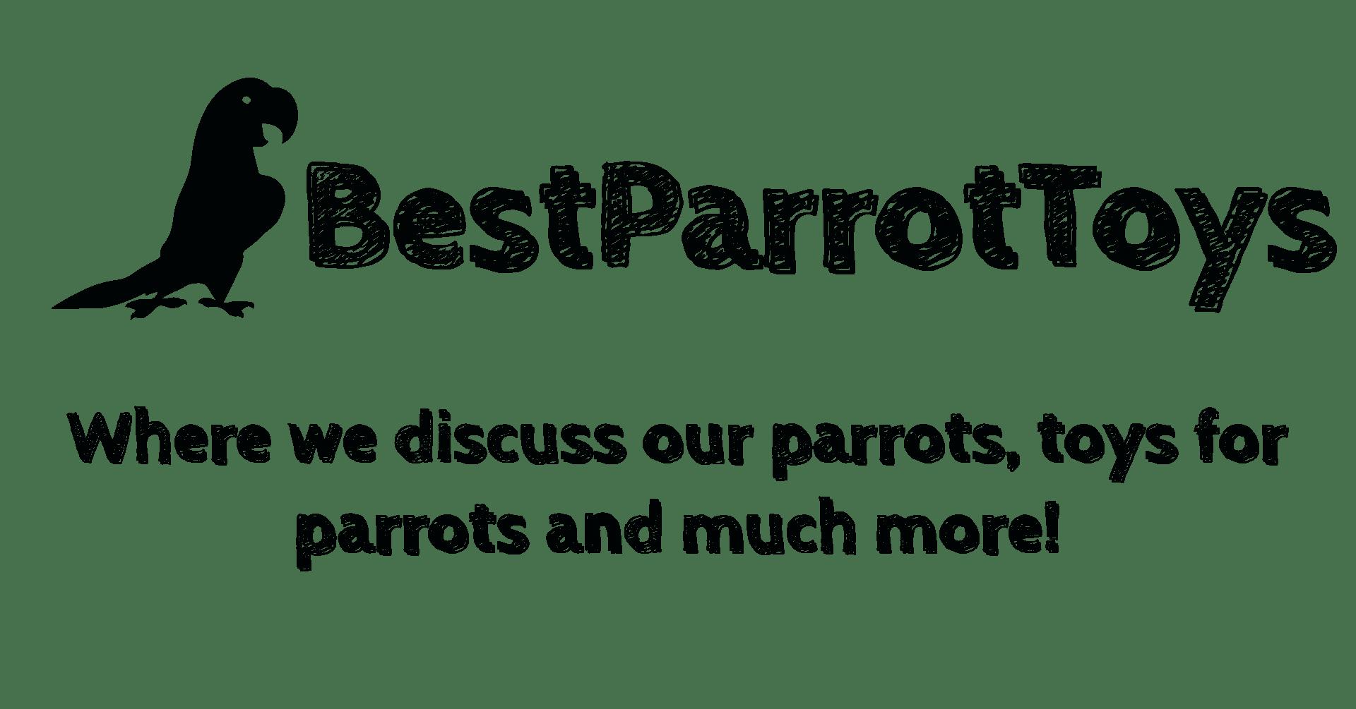 Best Parrot Toys - Logo Title