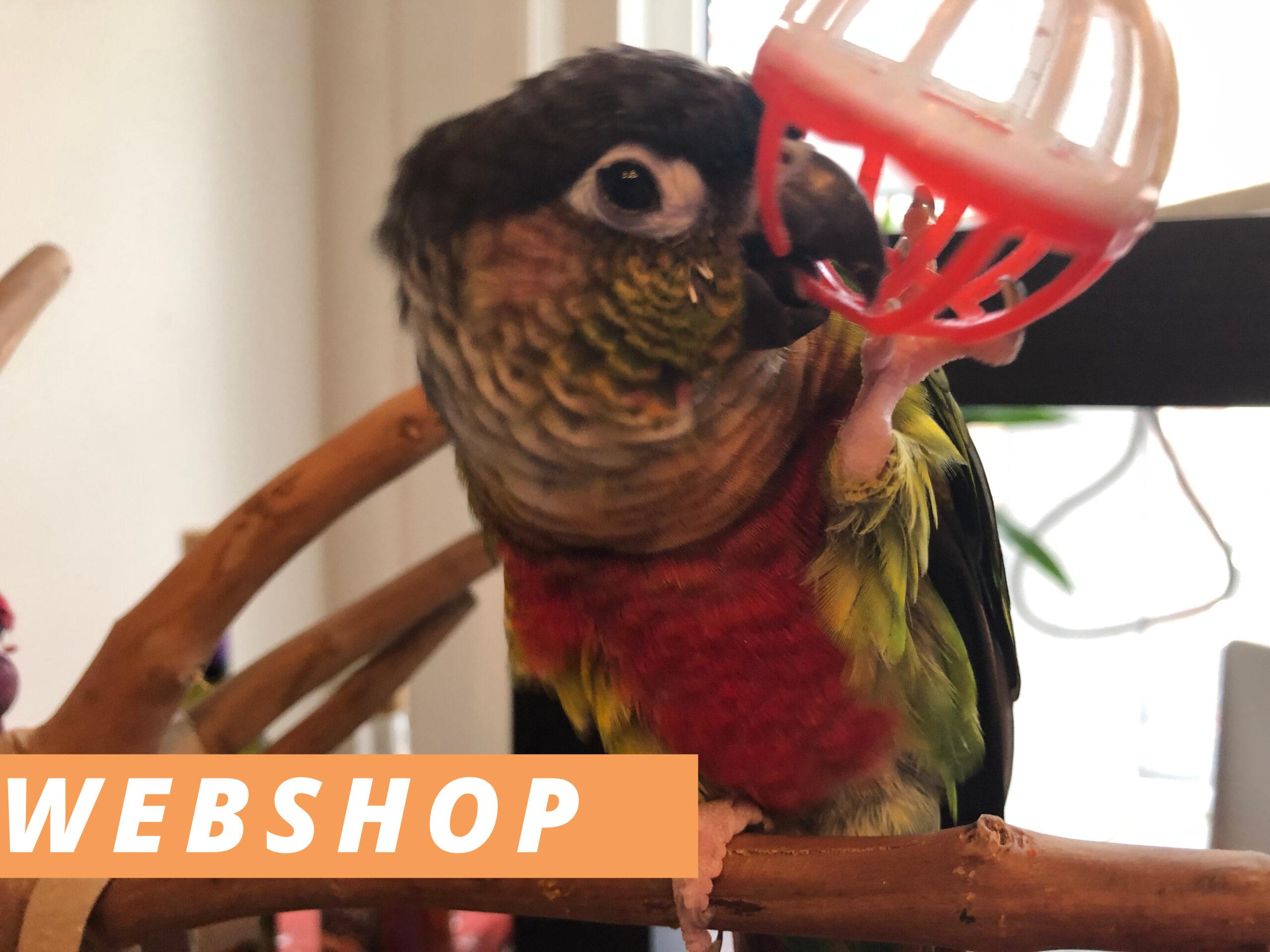 Webshop Best Parrot Toys