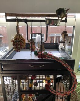 Parrot cage top playing area