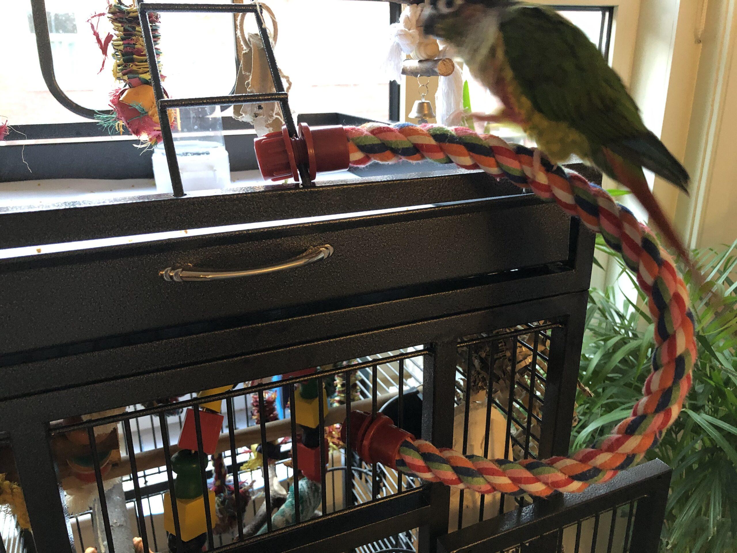 Flex perch cotton twist