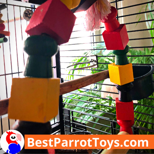 Parakeet SWING - Product REVIEW